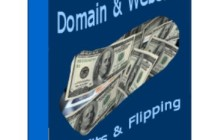 Domain Name & Website Profits and Flipping Guide free pdf download