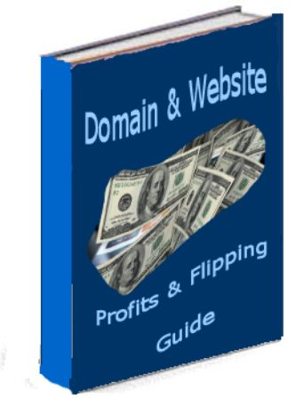 Domain & Website Profits Flipping Guide e-cover