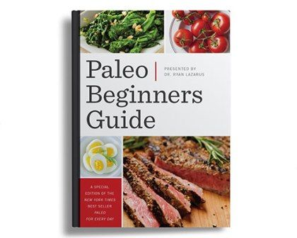 Paleo Beginners Guide e-cover