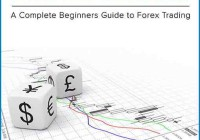The Forex Starter Manual PDF Free Download