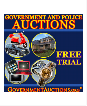 Guide To Government Auctions e-cover