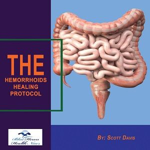 Hemorrhoids Healing Protocol